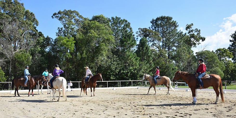 Sue Franks' Working Equitation Weekend - Caboolture