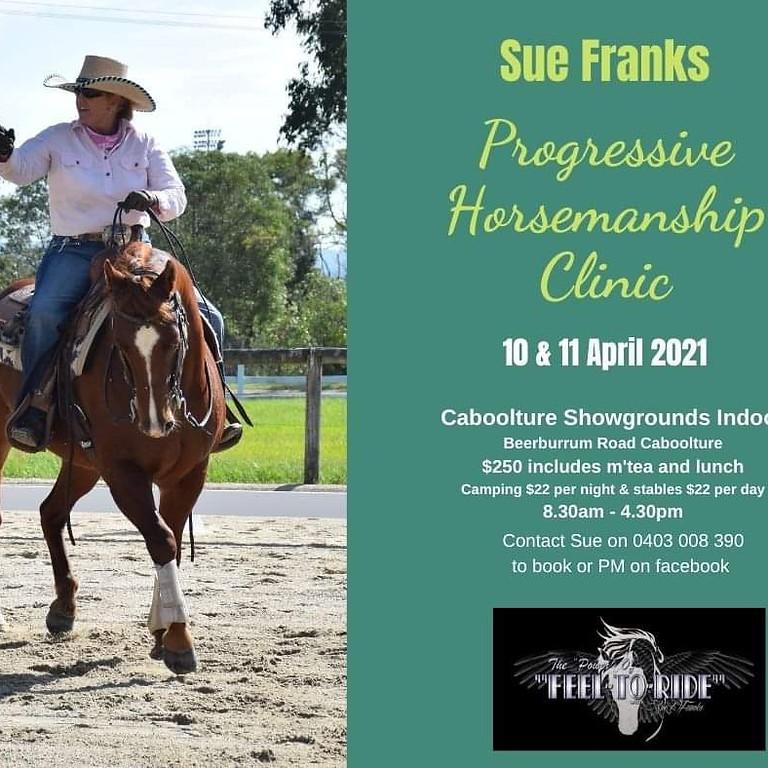 Progressive horsemanship