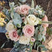 Pink and cream rose