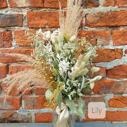 Dried Lily