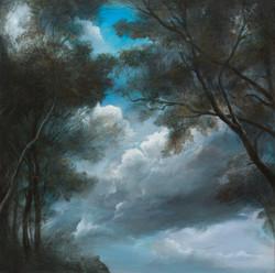 Clouds between trees