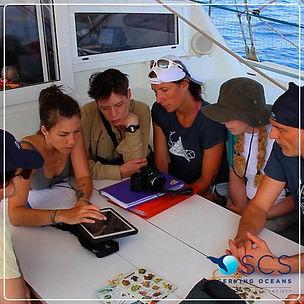 Eco-Volontaire SCS.jpg