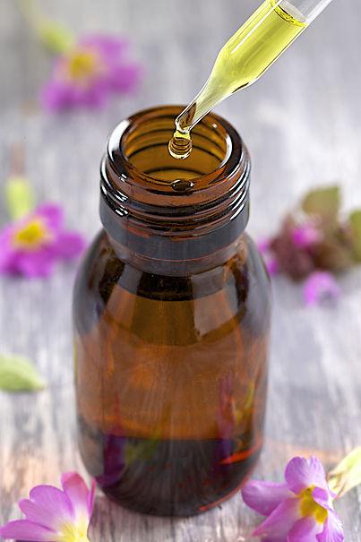 Therapeute fleurs de bach, Potentiaile, vaud