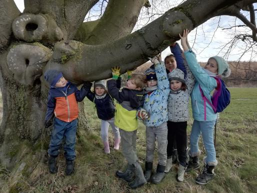 A propos des jeunes naturalistes du Condroz