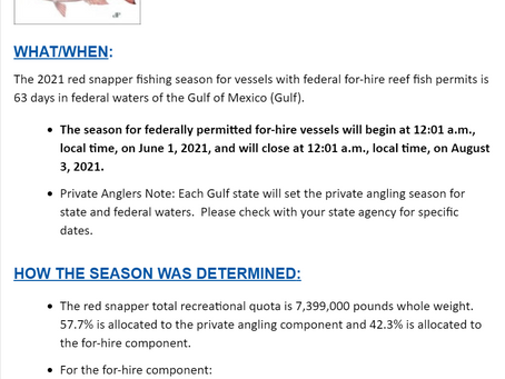 Red Snapper Season Gulf Of Mexico Announced for 2021