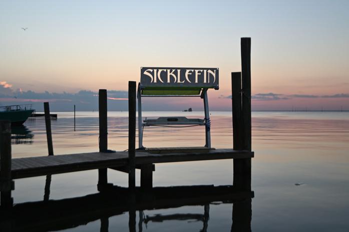 SickleFin Sunset