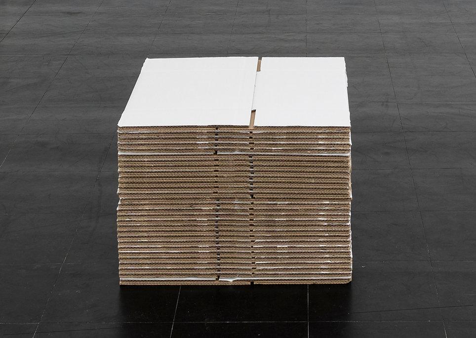 Kris Van Dessel - RECAP SOAP - 2016.jpg