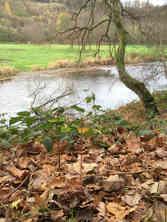 LOCATION 126, La Roche-en-Ardenne, 50.187019, 5.547238 Since November 15, 2015