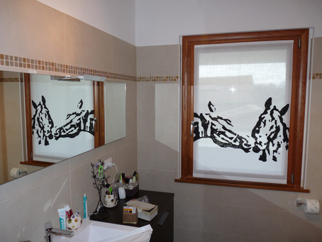 HO DUE CAVALLI IN BAGNO