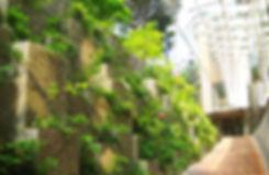Atelier-moabi-Tokyo-Ambassade (3).jpg