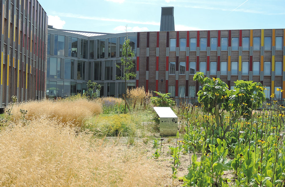 Atelier-moabi-Parc-CAF (5).jpg