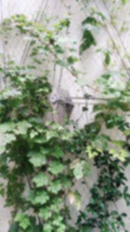 Atelier-moabi-Villars (1).jpg
