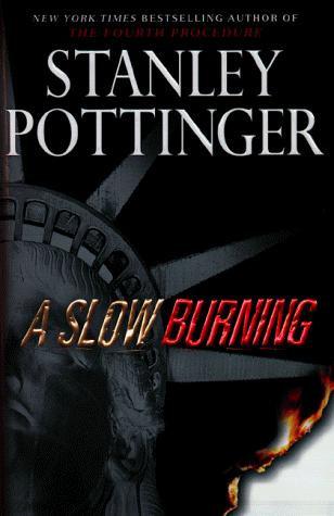 A Slow Burning by Pottinger Stanley