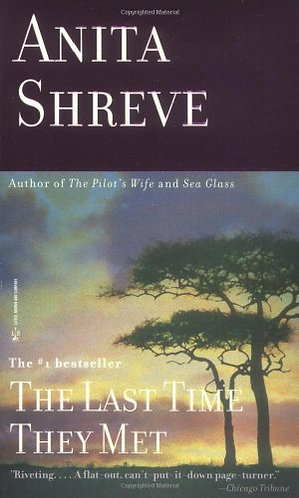 The Last Time They Met by Shreve Anita