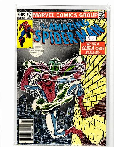 Amazing Spider-man V1 #231 NM (9.4)