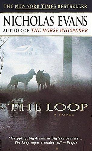 The Loop by Evans Nicholas