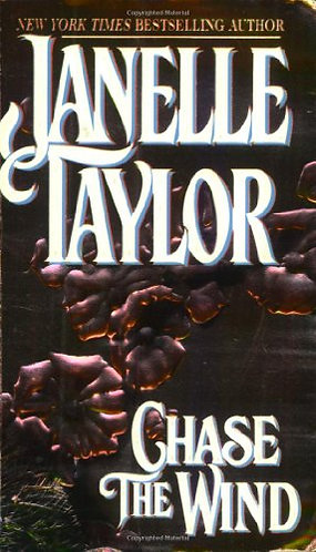 Chase The Wind by Taylor J