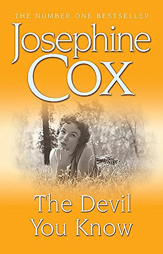 The Devil You Know by Cox Josephine