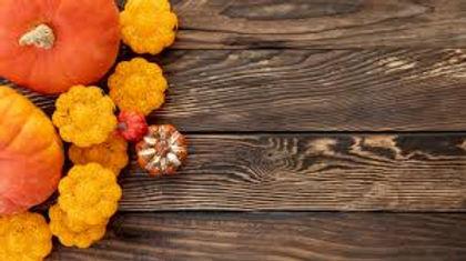 autumn restock.jpg