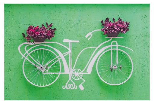 A foto é de uma obra de arte que está em uma parede em um tom de verde. Nela vemos uma bicicleta branca carregando dois cestos com plantas de folhas roxas, sendo um cesto na frente da bicicleta e outro na garupa. O corpo da bicicleta é pintado, mas as rodas e os vasos de plantas são reais.