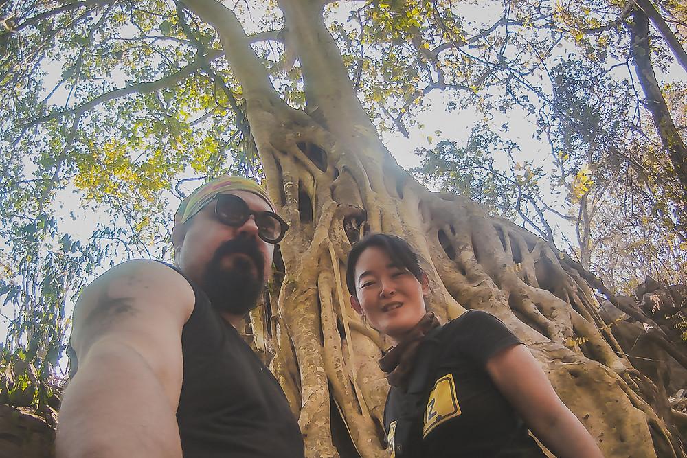 Cristiano e Sandra em frente as raízes de uma Gameleira