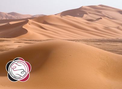 הליכה במדבר כמשל להתקדמות והתפתחות המתרגל