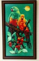 Пара попугайчиков