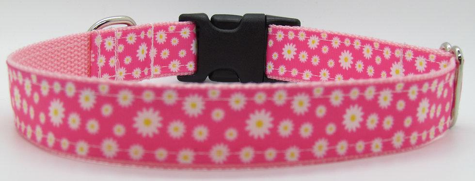 Pink Daisies Dog Collar