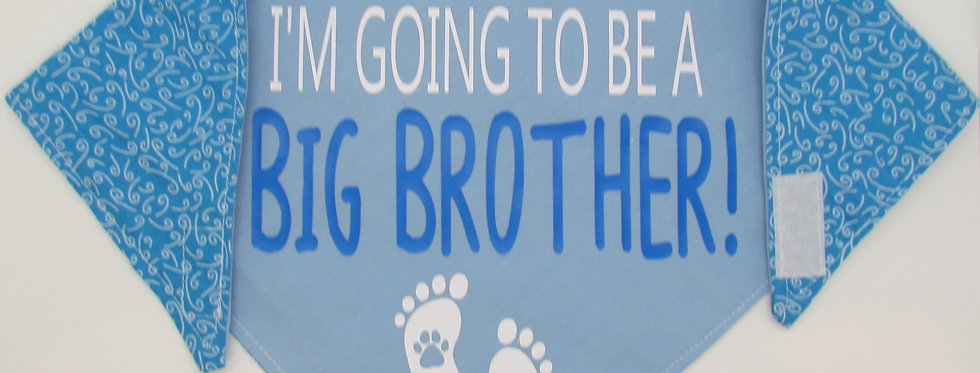 Big Brother (Light Blue Swirls) Reversible Dog Bandana