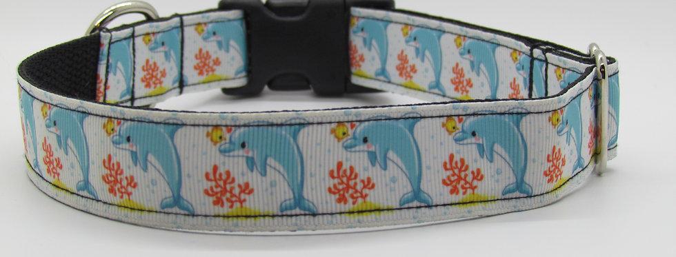 Dolphins Dog Collar