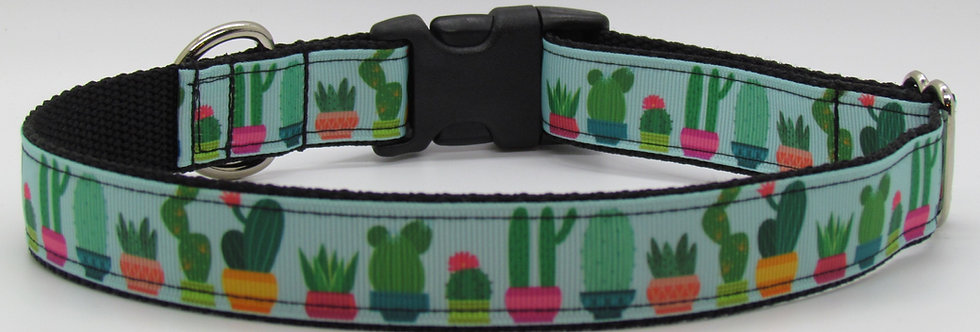 Cactus Dog Collar