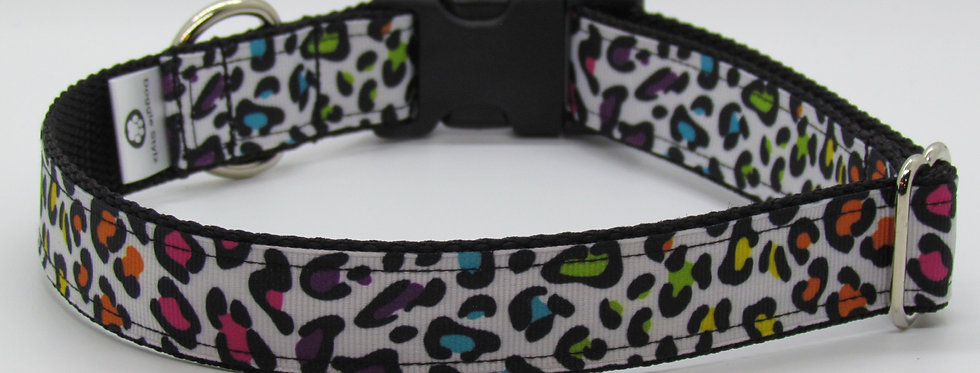 Rainbow Leopard Print Dog Collar
