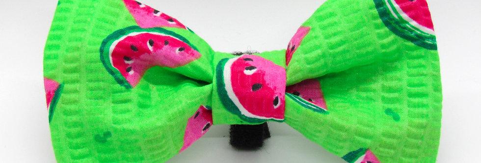 Watermelon Dog Bow Tie