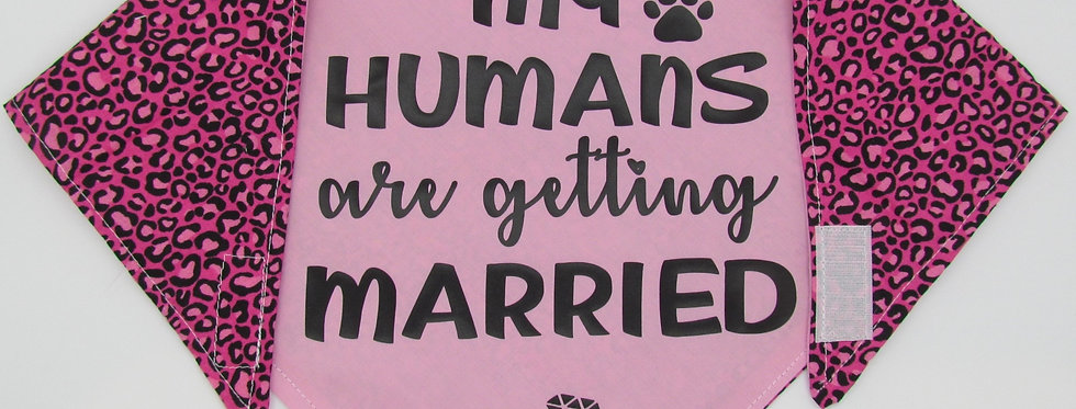 My Humans Are Getting Married (Pink) Reversible Dog Bandana
