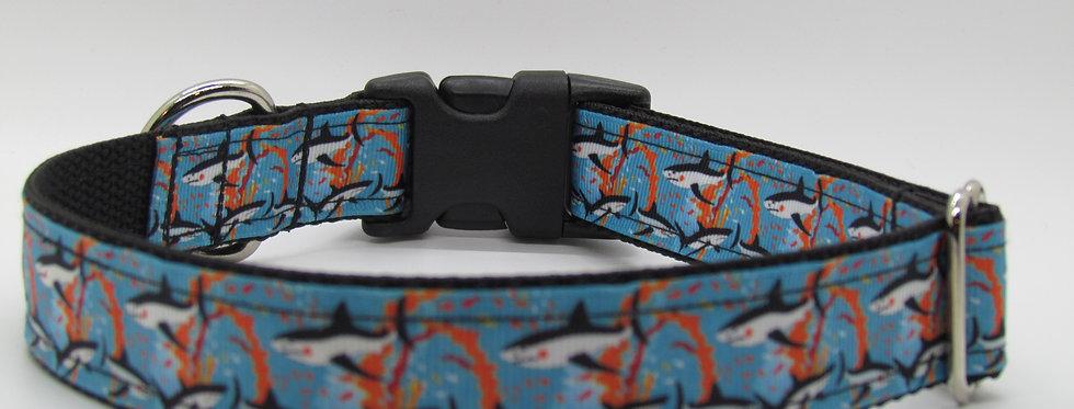 Sharks Dog Collar