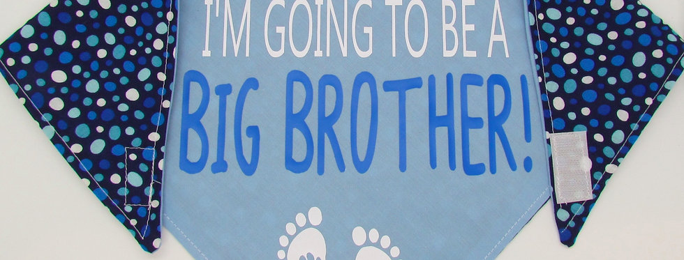 Big Brother (Light Blue Polka Dots) Reversible Dog Bandana
