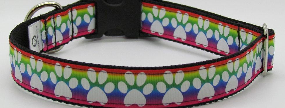 Bright Rainbow Paw Print Dog Collar