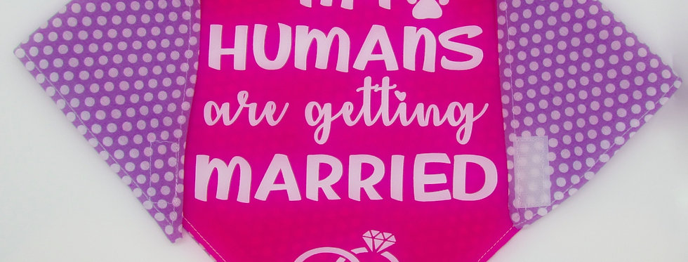 My Humans Are Getting Married (Hot Pink) Reversible Dog Bandana