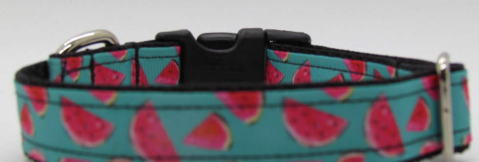 Small Blue Watermelons Dog Collar