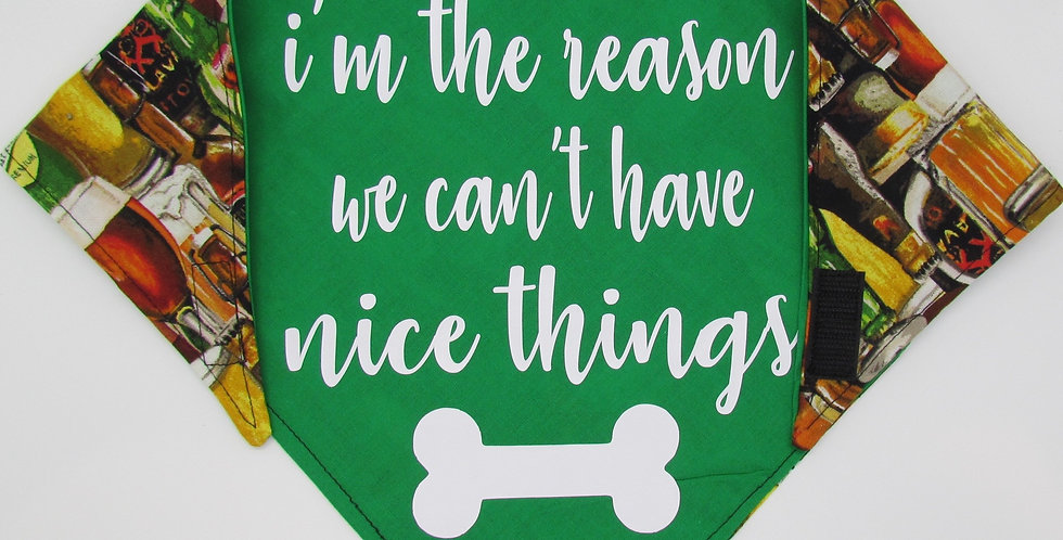 I'm the Reason We Can't Have Nice Things (Beer) Reversible Dog Bandana