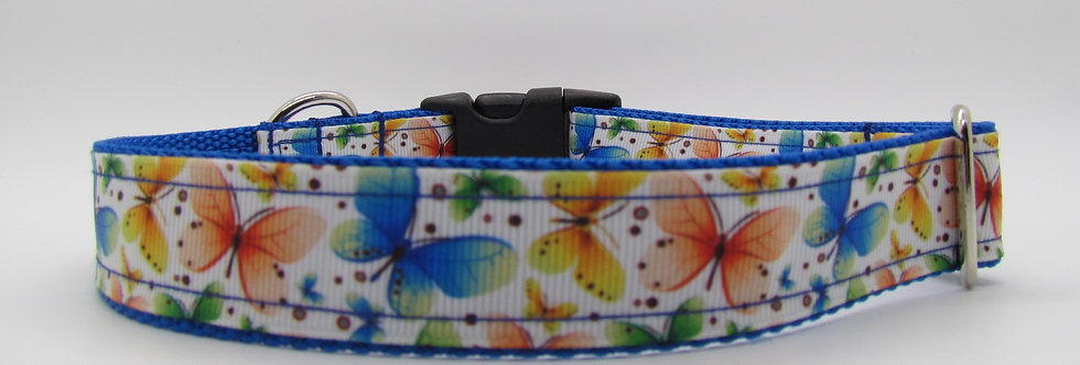 Butterflies Dog Collar