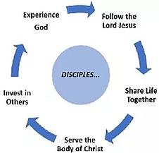 5 Step Discipleship Process_no plants.webp