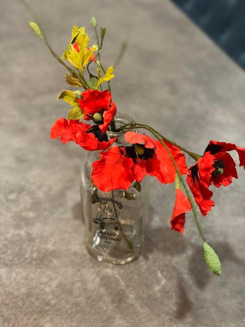 Persian Poppy