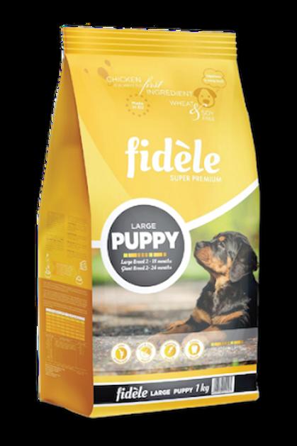 Fidèle's Puppy Large