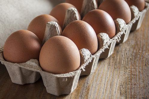 Local Pasture Raised Eggs