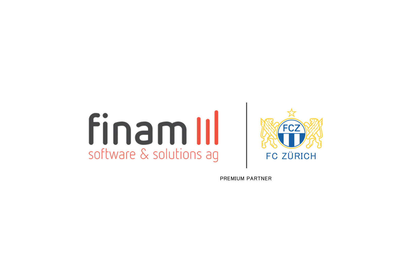 finam software&solutions ag