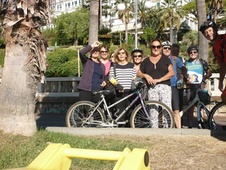 Rando-vélo et Apiculture