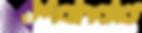MMS_Logo_White_300ppi.png