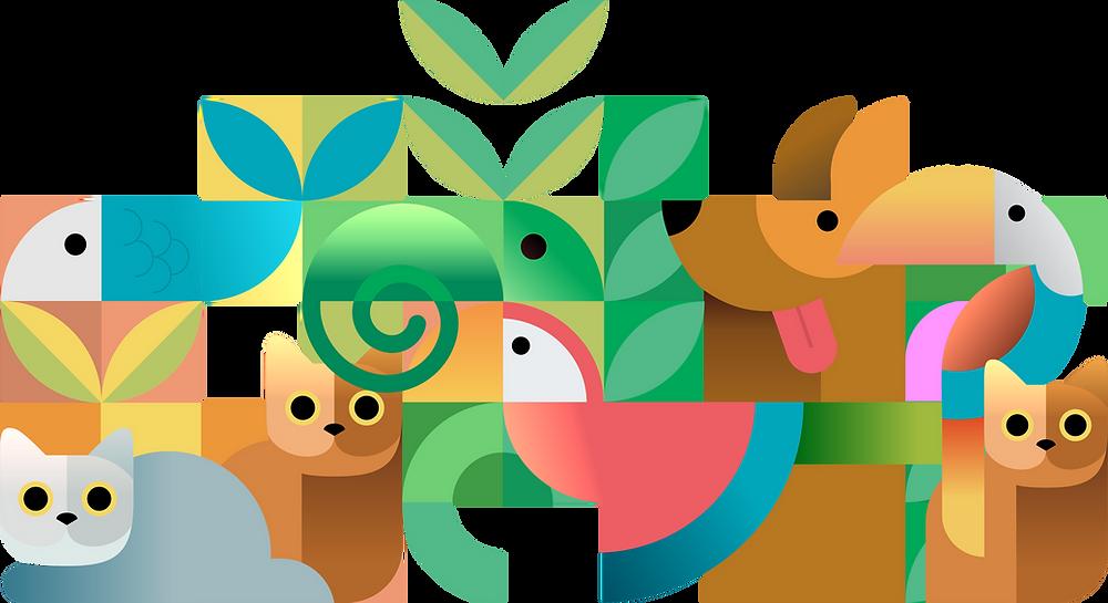 cachorro, gato, peixe, passaro, plantas, design, design gráfico, comunicação visual, programação visual