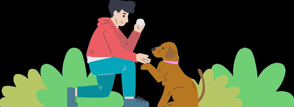 petshop, petopía, cachorro, melhor amigo, design, criação, projeto de design, comunicação visual